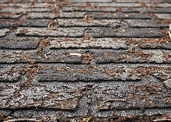 A.L. Residential & Commercial Roofing Images